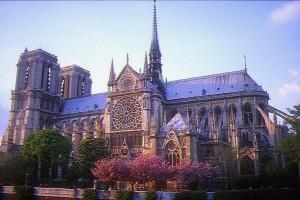 Image result for parigi notre dame